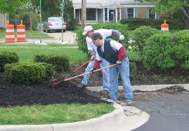 landscaping for pest management